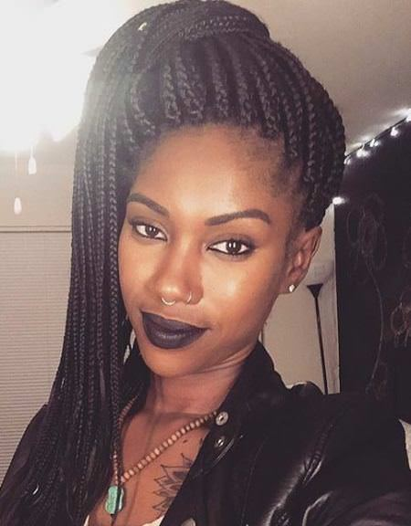 High ponytail with braided hairstyle twist braid styles to try this seaon