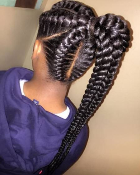 ong braided black ponytail hairstyles