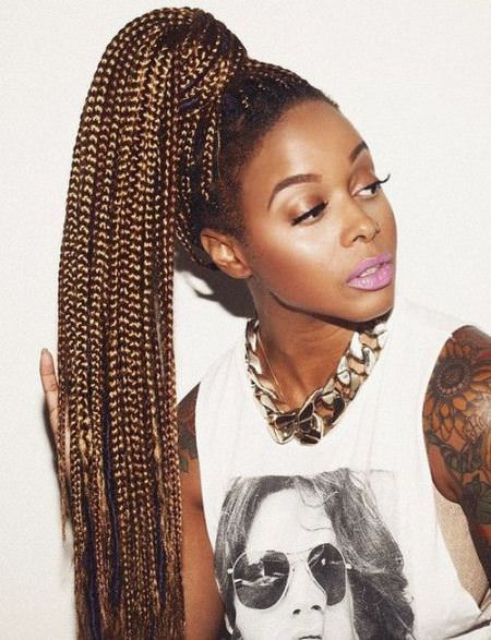 long high pony from box braids hairstyles for long natural hair